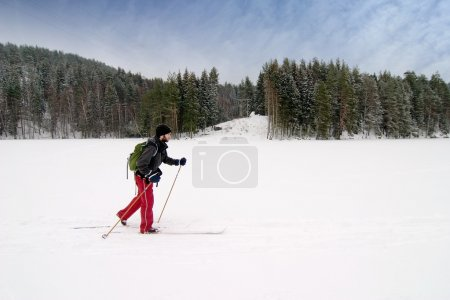 Novice Cross Country Skier