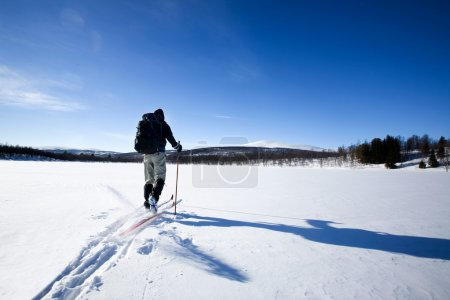 A cross country skiier skiing off trail back count...