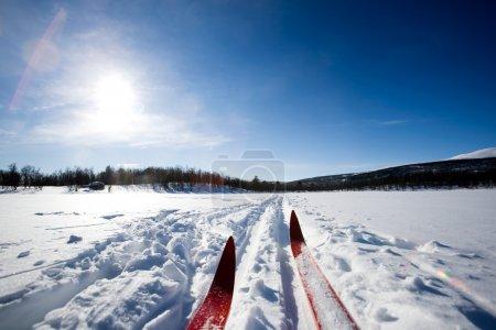 A cross country ski detail...