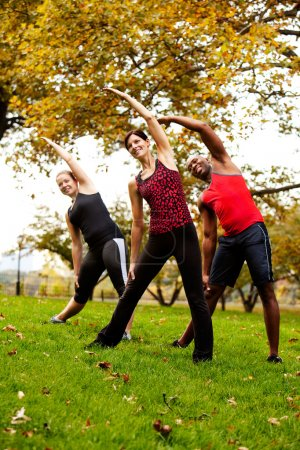 Photo for A group of exercising in a park - Royalty Free Image