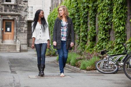 Photo pour Deux jeunes amis, avoir une conversation occasionnelle en marchant sur la rue - image libre de droit