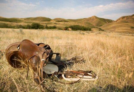 Photo pour Une selle western portant sur la prairie herbeuse avec chevaux et collines en arrière-plan - image libre de droit