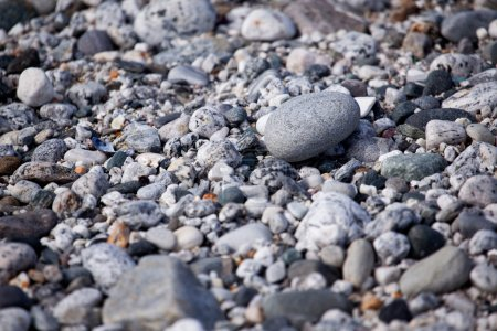 Photo for A smooth pebble surface texture background - Royalty Free Image