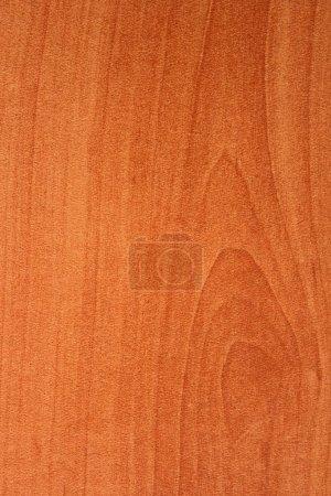 Photo pour Modèle de bois gros plan - image libre de droit