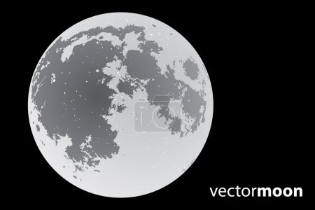 Illustration for Beautiful vector moon on black background - Royalty Free Image