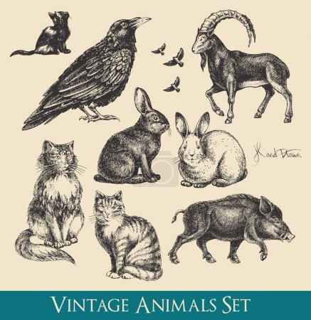 Photo for Retro / vintage graphics animals set - raven, cats, flying birds, rabbits, boar, goat - Royalty Free Image