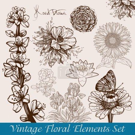 Foto de Vendimia / de flores retro Conjunto de fondos - ilustración vectorial - Imagen libre de derechos