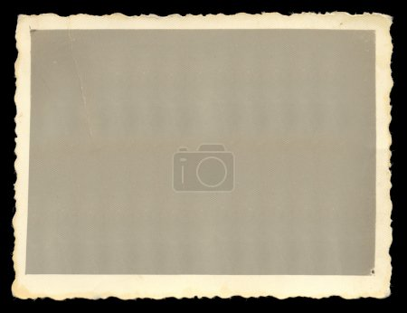 Photo for Vintage old blank photograph design element with white border. - Royalty Free Image