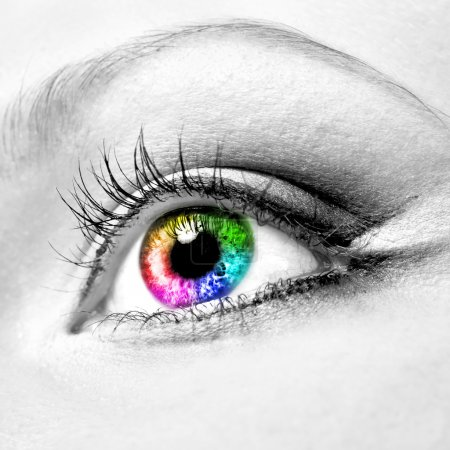 Photo for Close-up of beautiful colourful human eye - Royalty Free Image