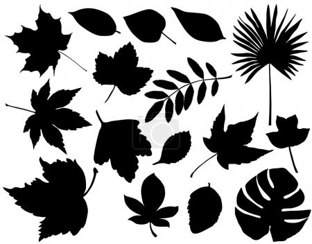 Illustration for Foliage silhouette - Royalty Free Image
