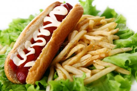 Fresh and tasty hot dog with fried potatoes