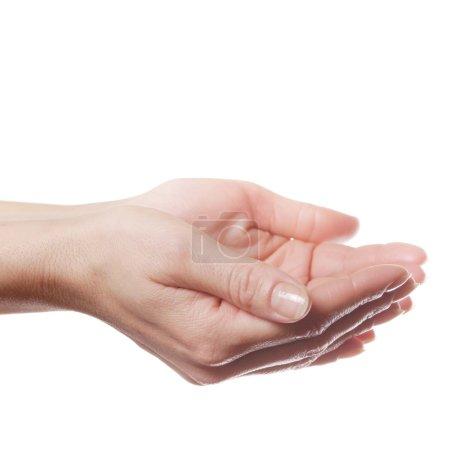 Human palms