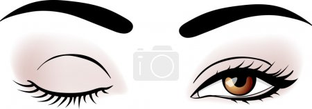 Illustration for Vector woman broun eyes illustration - Royalty Free Image