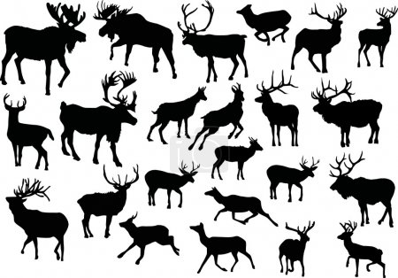 Illustration for Illustration with deer silhouettes isolated on white background - Royalty Free Image