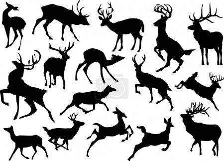 Illustration pour Illustration avec des silhouettes de cerfs isolés sur fond blanc - image libre de droit