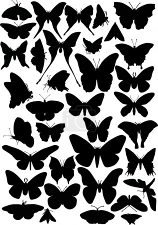 thirty six butterfly silhouettes