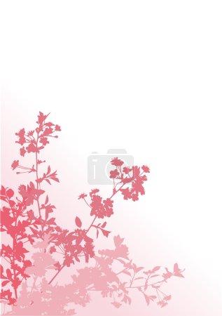 Illustration pour Illustration avec des fleurs de cerisier silhouette sur fond blanc - image libre de droit
