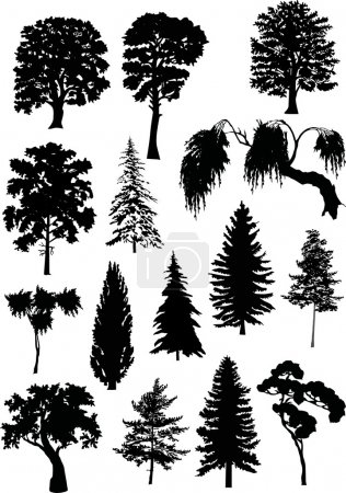 fifteen tree silhouettes