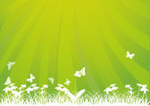 green and white illustration with butterflies