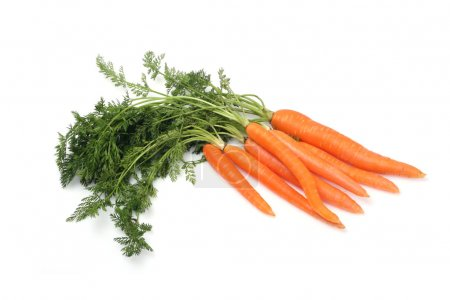 Photo for Carrot on white background - Royalty Free Image