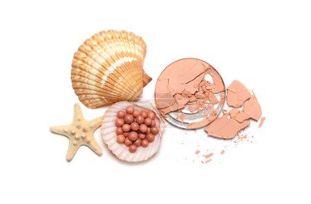 Make up powder and shells