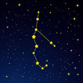 Vector illustration of constellation Perseus