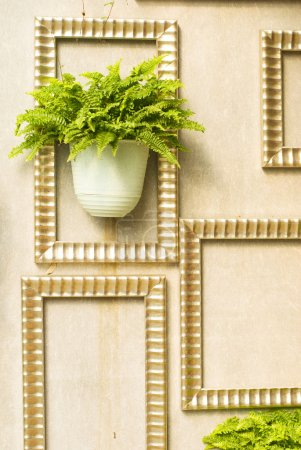 Photo for Green plant in wooden frame hang on the wall - Royalty Free Image