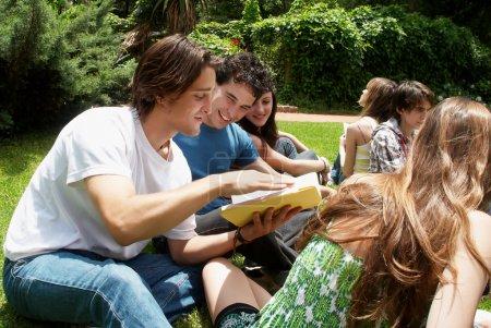 Grupo de estudiantes sentados en el parque sobre una hierba