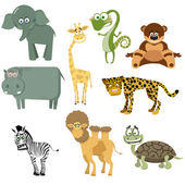 Set animal (Safari) Vector illustration