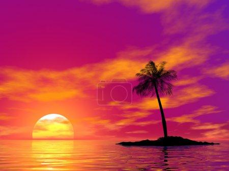 Foto de Palma sola en la isla deshabitada en el ocaso de un sol - Imagen libre de derechos