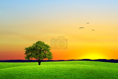 Photo for Goodbye summer - Royalty Free Image