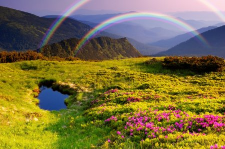 Photo for Summer landscape in mountains with Flowers, a rainbow and lake - Royalty Free Image