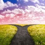 Crossroad in rural landscape on meadow hill in sun...