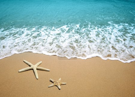Photo for Starfish on a beach sand - Royalty Free Image