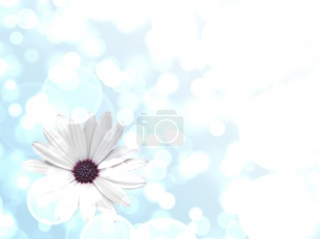 Blue abrstract background with flower