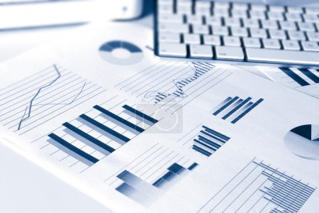 Financial performance graphs