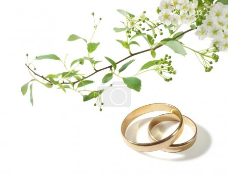 Photo for Wedding background with the rings and white flowers - Royalty Free Image