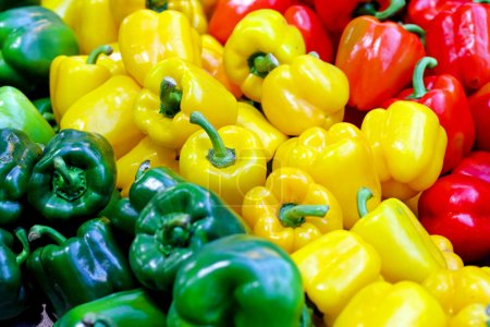 Photo for Colouful sweet bell peppers at farmers market - Royalty Free Image