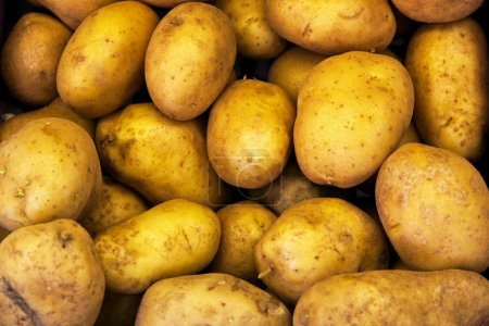 Photo for Bunch ofpotatoes at the farmers market - Royalty Free Image