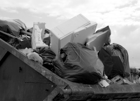 Waste skip
