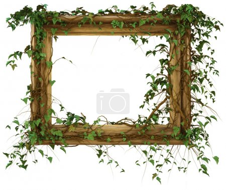 Photo for Wooden frame was overgrown with ivy. isolated on white. with clipping path. - Royalty Free Image