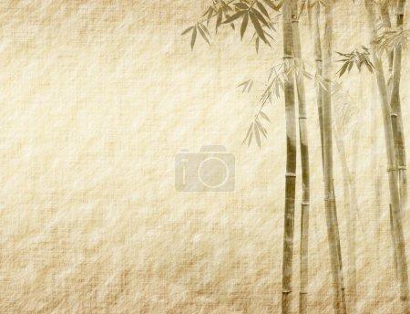 Photo pour Bambou sur la texture de papier antique ancienne grunge - image libre de droit