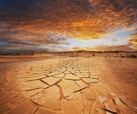 Photo pour Terres arides - image libre de droit