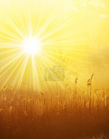 Photo pour Scène du lever du soleil - image libre de droit