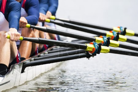Photo for Close up of a men's quadruple skulls rowing team, seconds after the start of their race - Royalty Free Image