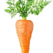 Carrot isolated on white...