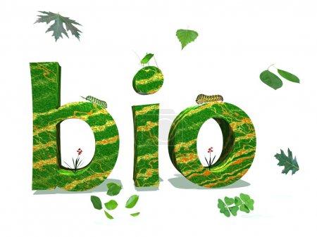 Photo pour Lettres bio dans la couleur de la nature entourée de feuilles vertes et d'insectes en fond blanc - image libre de droit