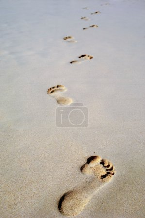 Footprint in sand on beach
