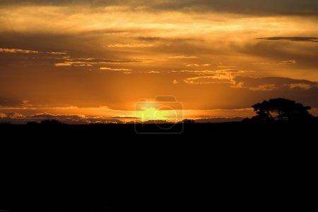 Photo for Sunset over farmland, Australia - Royalty Free Image