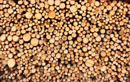 Photo pour Tas de bois de feu haché préparé pour l'hiver - image libre de droit